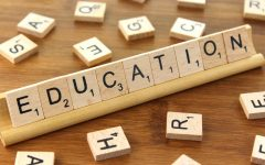 The Flaws of Education