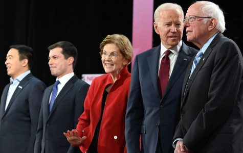 The Democratic Field